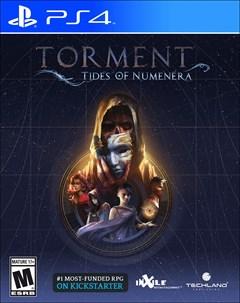 Torment: Tides of Numenera PlayStation 4 Box Art
