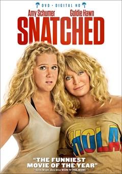 Snatched DVD Box Art