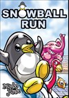 Download Snowball Run for PC