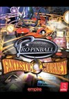 Download Pro Pinball: Fantastic Journey for PC